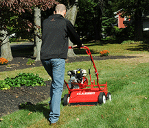 Consider a seeder that is versatile for additional turf renovation applications. Look for a unit that offers optional blade assemblies for dethatching and vertical cutting.